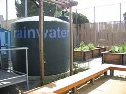 Rainwater Collection Could Save Urban Consumers $90 Million a Year